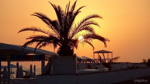 """Только позавчера вернулась из Адлера, (слева граница с Абхазией, справа в 4,5 км Олимпийский парк). Море чистое, пляж тоже чистый, контейнеры для мусора через каждые 10 метров.  2 недели подряд +29, +30, температура воды +25, +26. И каждый день солнце, солнце, солнце...😭 Зато дома такая красота - прохладный воздух, низкое серое небо, деревья предстают во всей осенней красе.😊 Как писал русский драматург  Грибоедов С. А: """"И дым Отечества нам сладок и приятен!"""" Мир глазами ухтинцев Ухта"""