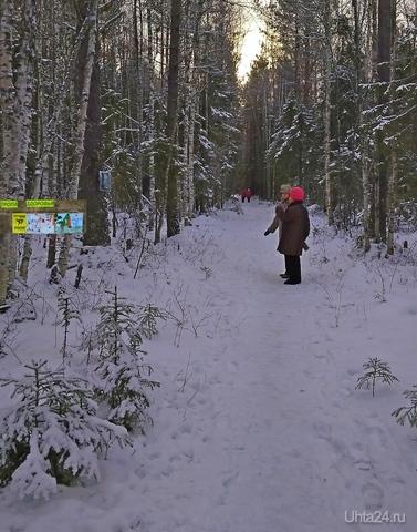Открытие сезона на тропе здоровья (Ярега) Разное Ухта