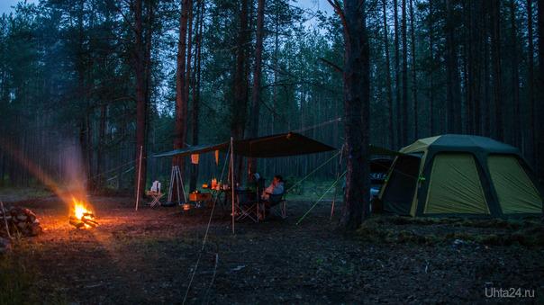 в сказочном лесе  Ухта
