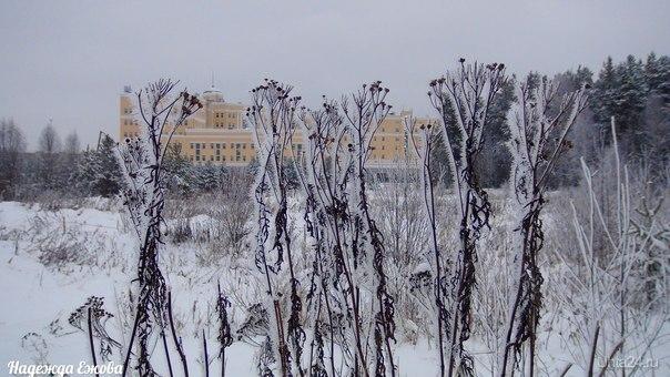 Пришла зима. Природа Ухты и Коми Ухта