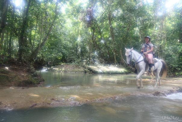 Доминиканская республика, конная прогулка Мир глазами ухтинцев Ухта