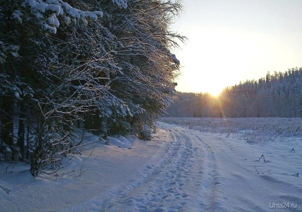 С днём зимнего солнцестояния!  Природа Ухты и Коми Ухта