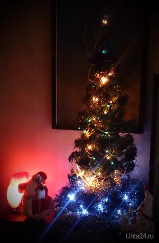 Нууу, и елочка! Новый год Ухта