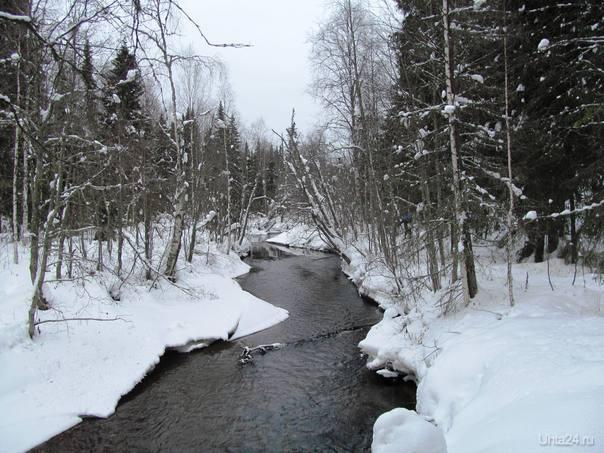 этой зимой у нас вообще ничего не замерзает Природа Ухты и Коми Ухта