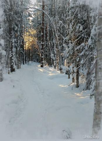 Пятна солнечного света на снегу. Природа Ухты и Коми Ухта