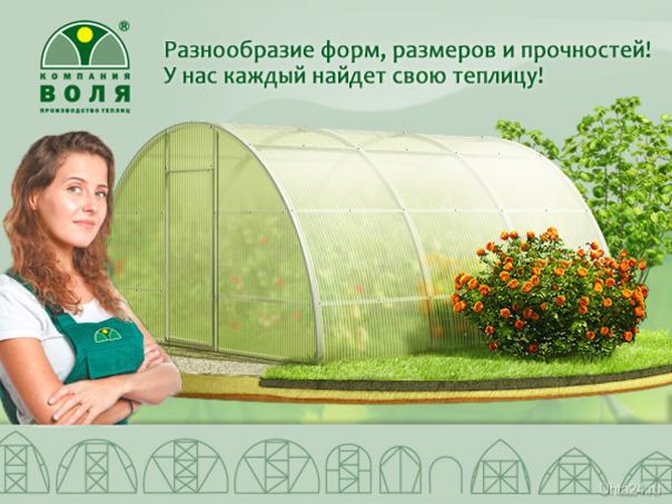 К черту санкции, выращивай урожай на своей плантации!  Ухта