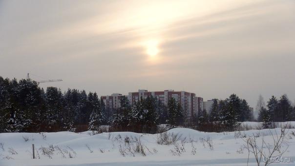 Пасмурный зимний день. Природа Ухты и Коми Ухта