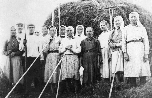 Сенокос в деревне, Костромская область 50-60 года ( моя бабушка в чёрном платье) Из глубин истории Ухта