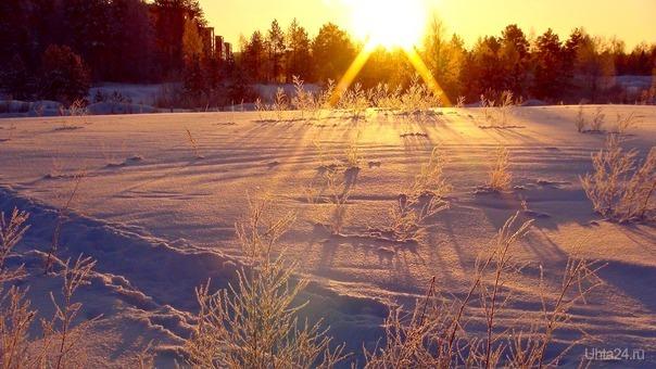 Мороз и солнце; день чудесный! / Пушкин А.С.  Природа Ухты и Коми Ухта