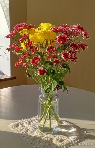 Букет хризантем Разное Ухта
