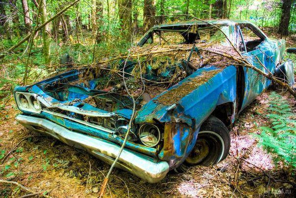 Мой красавец Мой автомобиль Ухта