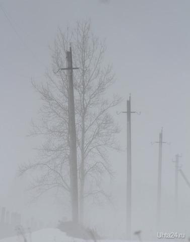 Утренний туман Природа Ухты и Коми Ухта