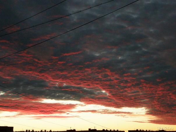 Таня, да вот эти провода)) Вчера тут такое небо было вечером.  Природа Ухты и Коми Ухта