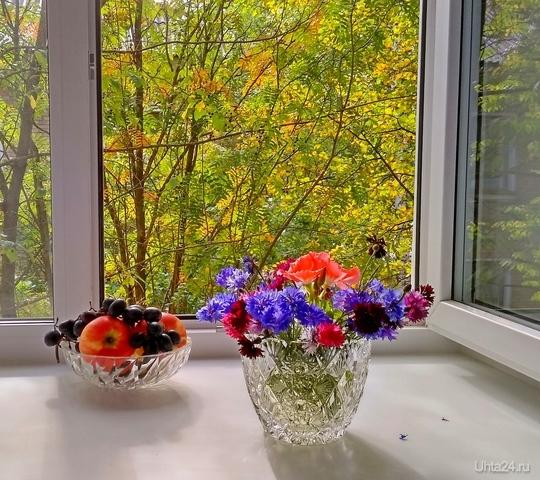 Сентябрь за окном Разное Ухта