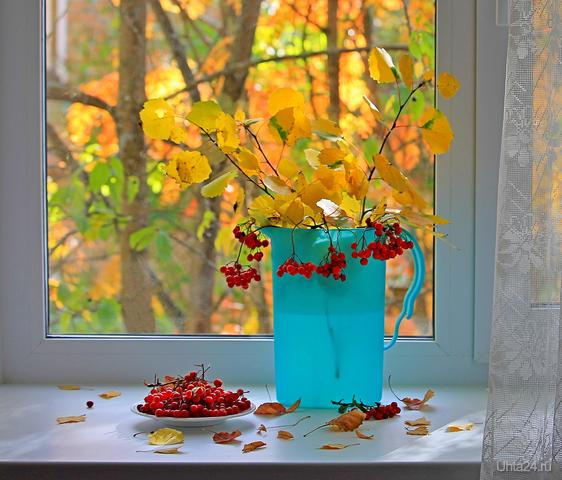 Осенний натюрморт Разное Ухта