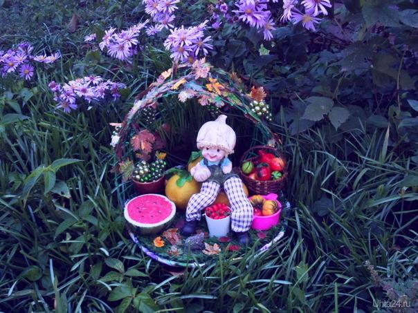 """Поделка """"Золотая осень"""" в садик для внучки. Творчество, хобби Ухта"""