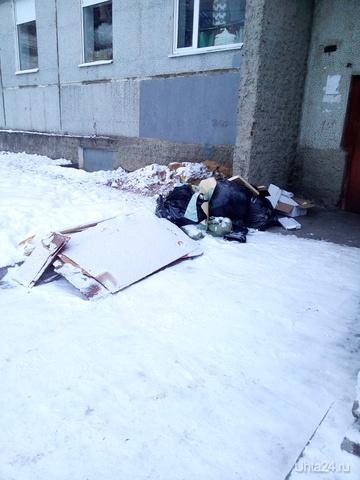 Почему не вывозят крупно габаритный мусор в Эжвинском районе? Разное Ухта