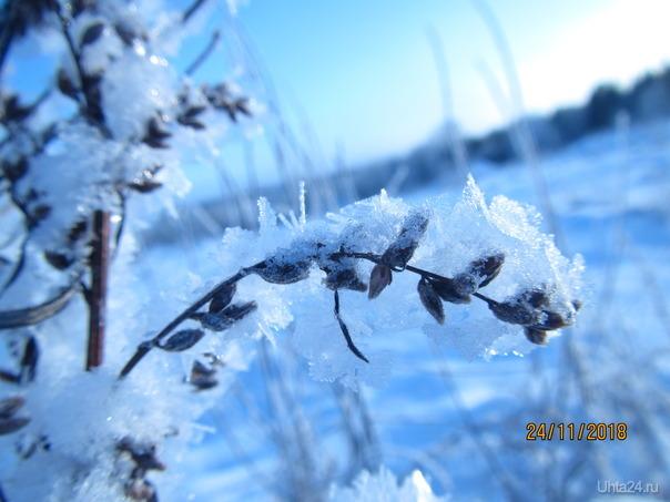 Ой мороз..мороз. Разное Ухта