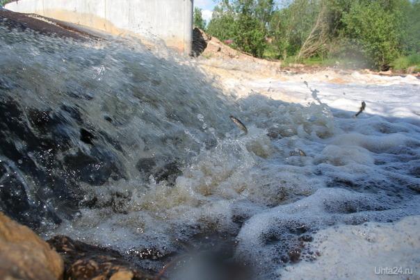 Рыба в Чибьюшке была Улицы города Ухта