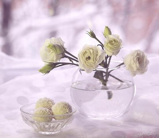 Зимний натюрморт с розами Разное Ухта