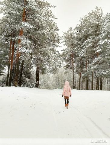Прогулка в лес  Ухта