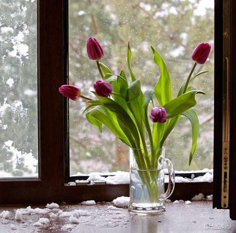 А всё равно весна)  Ухта