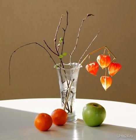 Натюрморт с фруктами и ветками Разное Ухта