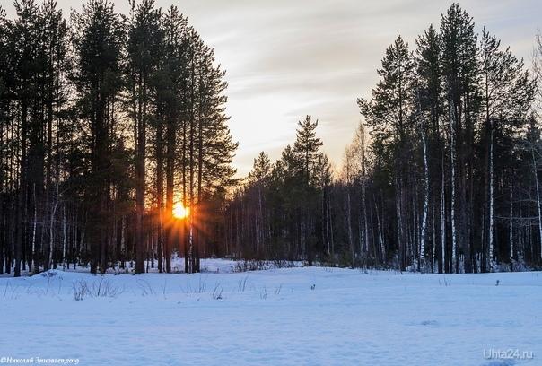 Закат в апрельской тайге... Природа Ухты и Коми Ухта