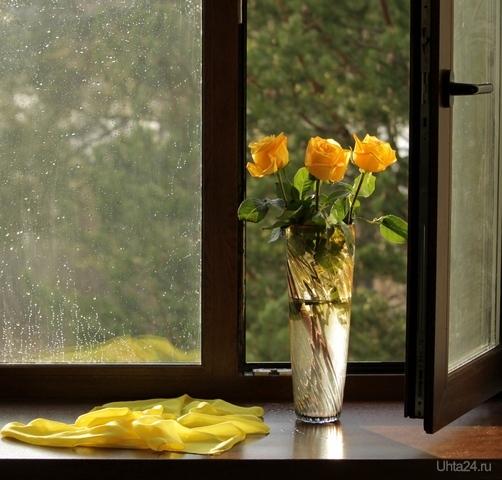 Натюрморт с жёлтыми розами  Ухта