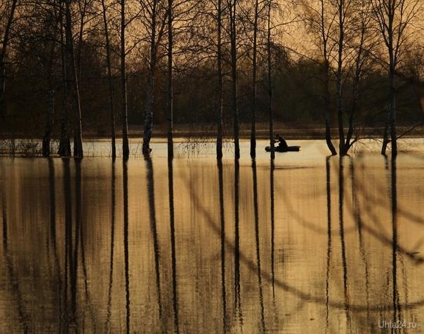Вечером на озере Природа Ухты и Коми Ухта