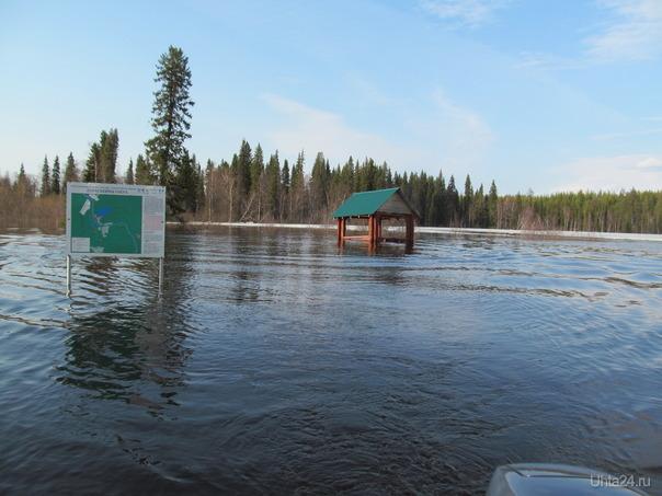 Всё, нет теперь параськиного озера, слилося с рекою навечно Природа Ухты и Коми Ухта