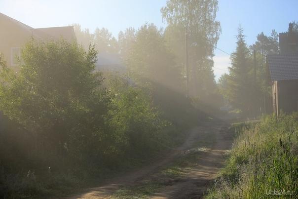 Раннее утро на даче. Рассеивающийся туман. Природа Ухты и Коми Ухта