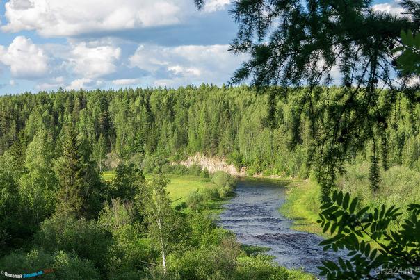 Таёжные просторы реки Чуть. Природа Ухты и Коми Ухта