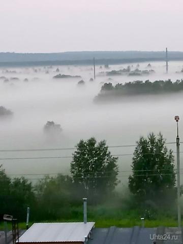Утро туманное, утро седое... Природа Ухты и Коми Ухта