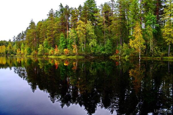 вот и осень на пороге,а там и зима..снова! Природа Ухты и Коми Ухта