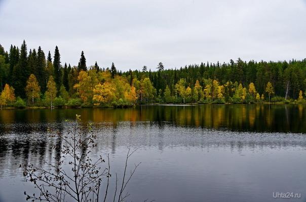 на Параськиных..осень всё ближе. Природа Ухты и Коми Ухта