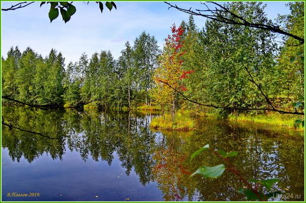 на пашнинских озёрах.. Природа Ухты и Коми Ухта