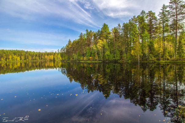 Большое Параськино озеро Природа Ухты и Коми Ухта