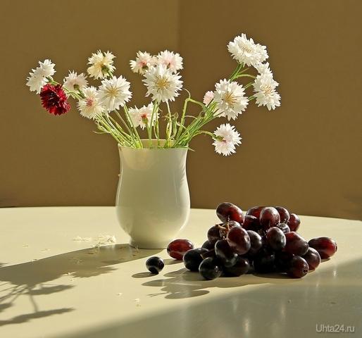 Натюрморт с виноградом и васильками Разное Ухта