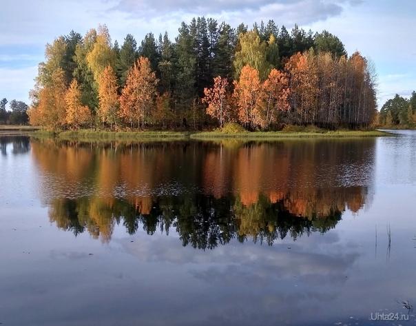 Островок на озере. Снято за Сыктывкаром. Природа Ухты и Коми Ухта
