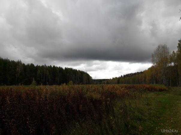 Перед дождем. Природа Ухты и Коми Ухта