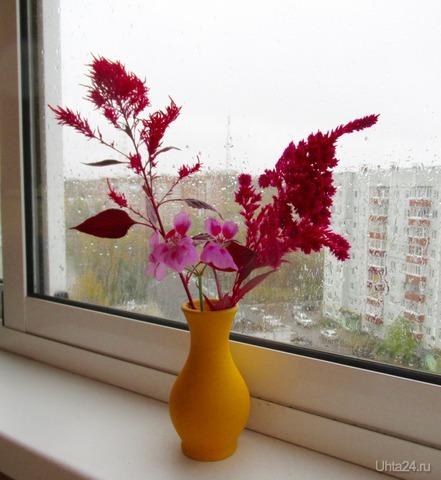 Осенний дождь за окном.  Ухта