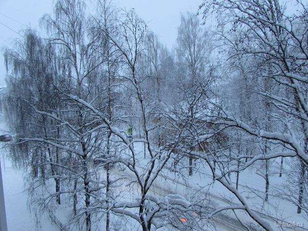 Скоро зима, морозы Природа Ухты и Коми Ухта
