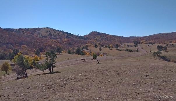 Осень в горах. Крым.  Ухта