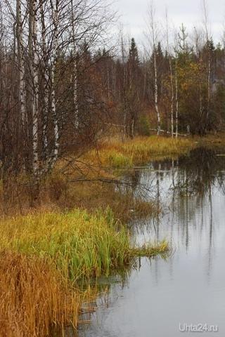 Осень  Ухта