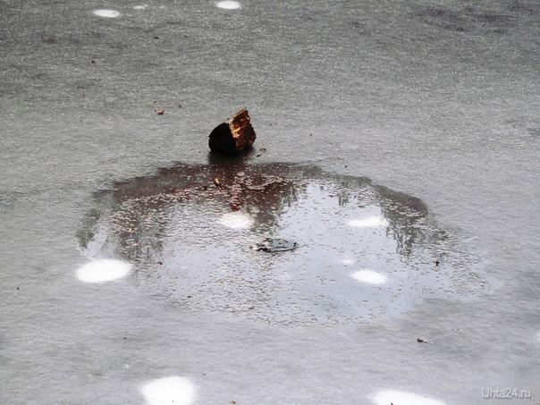 бросил пенек с костра в водоём, как у вас там на югах? Природа Ухты и Коми Ухта