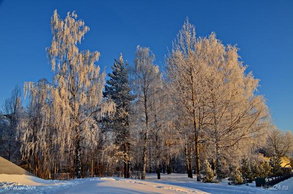 Морозный денёчек Природа Ухты и Коми Ухта