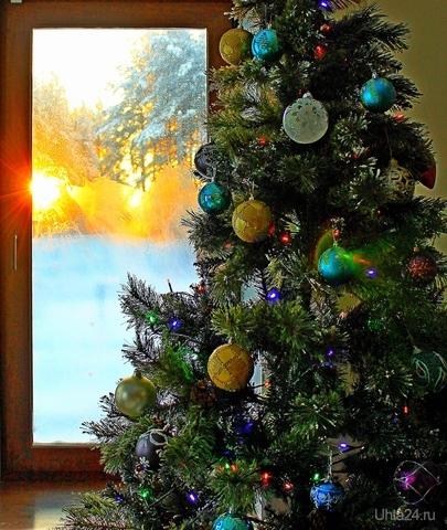 22 декабря - День зимнего солнцестояния. Почти праздник, т.к. с каждым днём теперь станет светлее).( Фото прошлогоднее).  Ухта