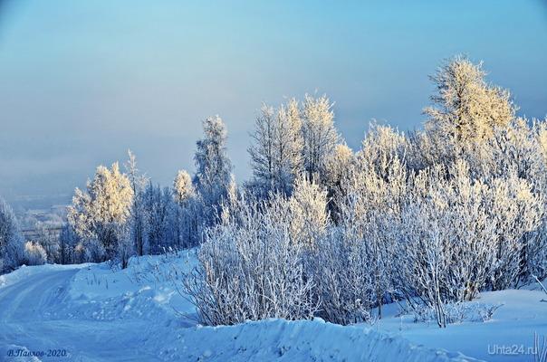 Крещенские морозы.. Природа Ухты и Коми Ухта