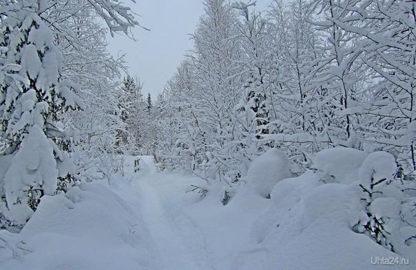 После снегопада  Ухта
